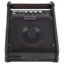 """SM-20 Stage Monitor 6.5"""" 20W"""