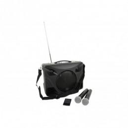 DELTA-50 Portable PA