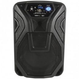 Busker-10 PA + 1 x VHF mics + USB/SD/FM/BT