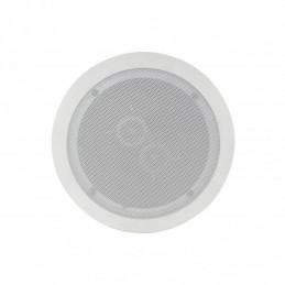 "6.5"" Dual voice coil ceiling speaker with dual tweeters"