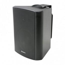 """BC5V-B 100V 5.25"""" background speaker black"""