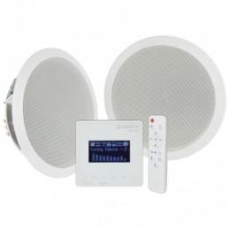 WA-215 Amplifier + Ceiling Speakers Set
