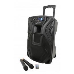 Busker-12 PA + 2 x VHF mics...